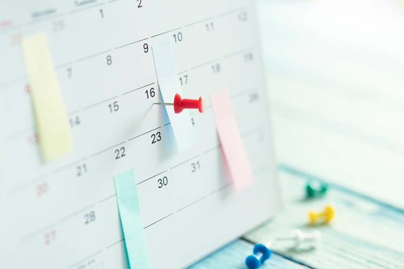 have a book publishing schedule